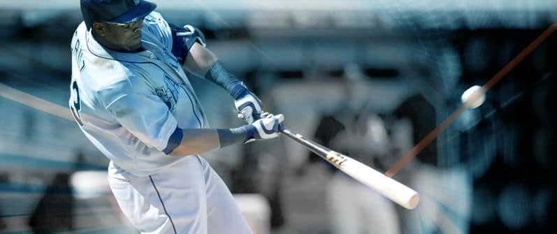 Top 5 Best Wood Baseball Bats - The Hitting Vault